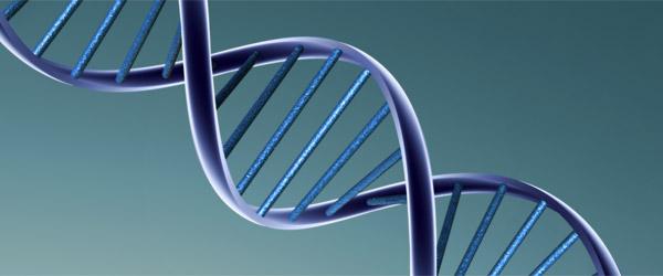 Niš dobija laboratoriju za DNK analize