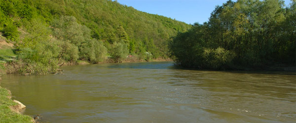 Čišćenje reke Južne Morave