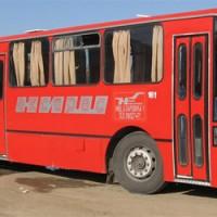 nisekspres-autobus