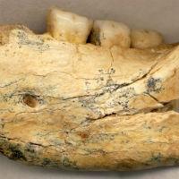 Veliko arheološko otkriće kod Niša