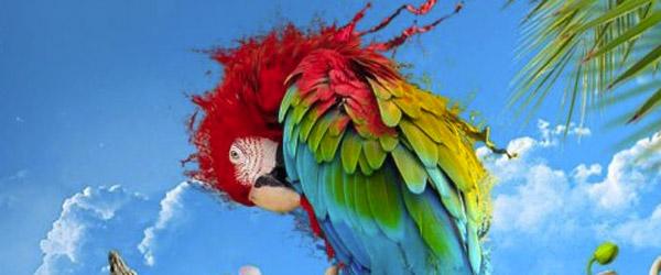 Svetski dan zaštite životinja