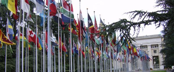 Niš u mreži bezbednih gradova UN